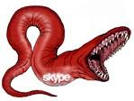 Через Skype распространяется опасный вирус